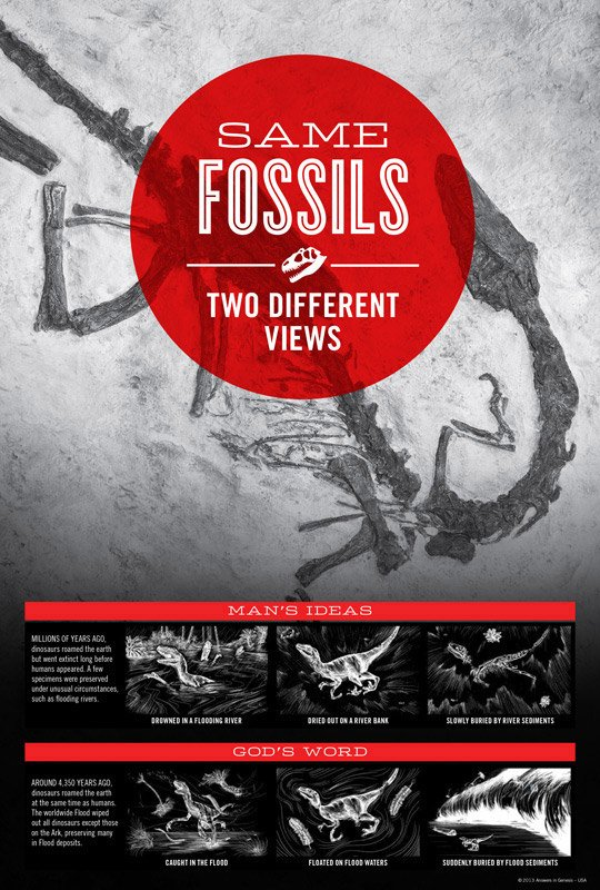 Same Fossils Two Different Views Answers In Genesis