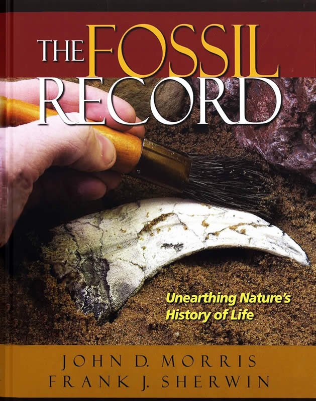 The fossil record answers in genesis fandeluxe Choice Image