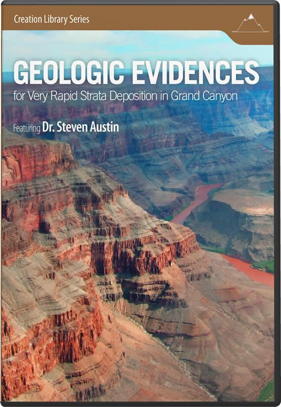 geologic evidences for very rapid strata deposition in the