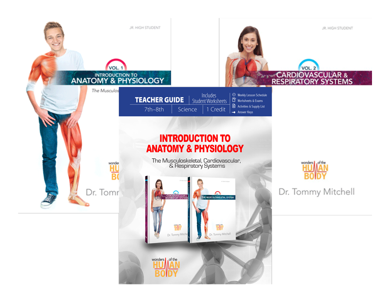Introduction to Anatomy & Physiology: Curriculum Pack | Answers in ...