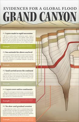 Evidences for a Global Flood—Grand Canyon Wall Chart