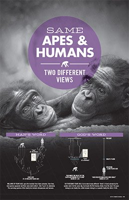 Same Apes and Humans, Two Different Views