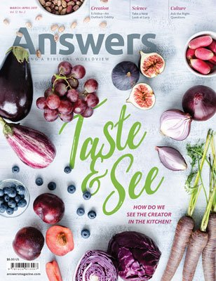 Answers Magazine, Single Issue - Vol. 12 No. 2