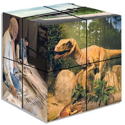 Creation Museum Cube