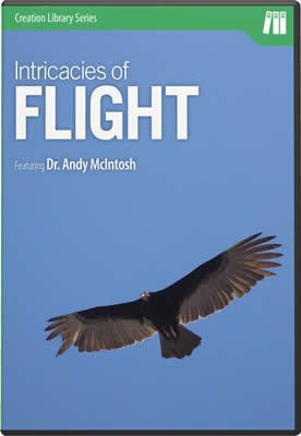 The Intricacies of Flight