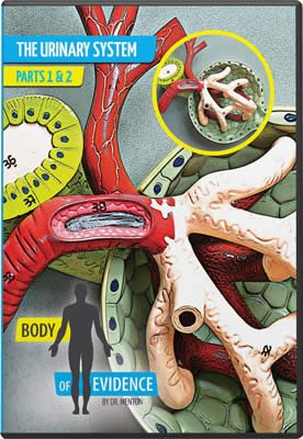 Body of Evidence 7: Urinary System