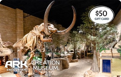 Attractions Gift Cards: $50