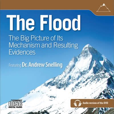 The Flood: Audio download