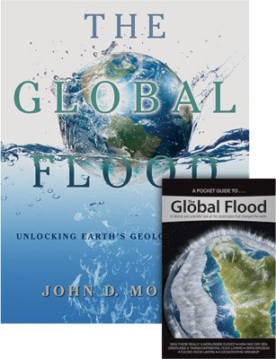 The Global Flood Combo
