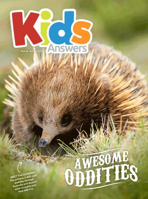Kids Answers Mini-magazine - Vol. 12 No. 2
