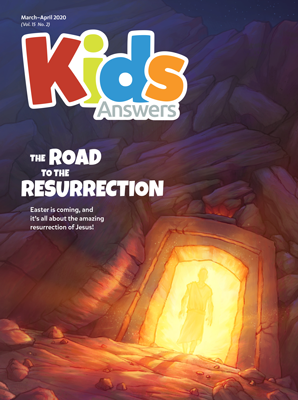 The Road to the Resurrection Kids Answers