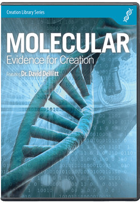 Molecular Evidence For Creation Answers In Genesis