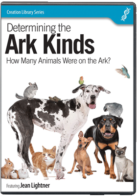 Determining the Ark Kinds DVD