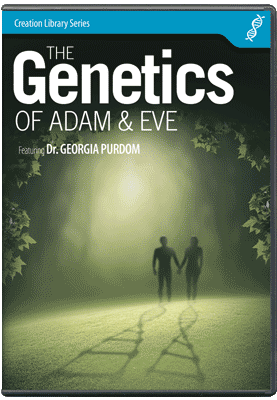 The Genetics of Adam & Eve