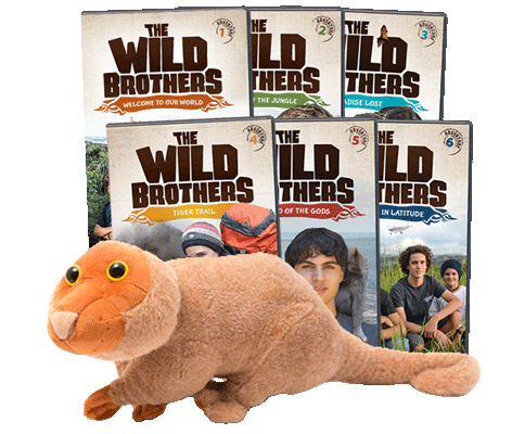 The Wild Brothers Adventures 1 - 6 + Newt Pack
