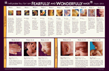 Fetal Development Wall Chart: Single copy