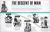 Descent of Man Wall Chart
