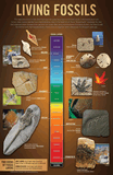 Living Fossils Wall Chart