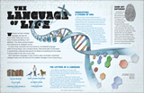 DNA—The Language of Life Wall Chart
