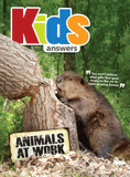 Kids Answers Mini-magazine - Vol. 10 No. 3