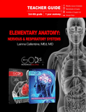 Elementary Anatomy: Nervous & Respiratory Systems Teacher Guide