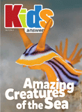 Kids Answers Mini-magazine - Vol. 11 No. 2