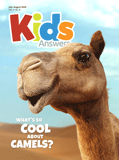 Kids Answers Mini-magazine - Vol. 15 No. 3