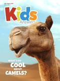 Kids Answers Mini-magazine - Vol. 15 No. 3