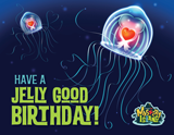Mystery Island VBS: Happy Birthday Follow Up Postcard