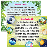 ABC Sunday School (Y1): Memory Verse Posters - Grades 1–6: Quarter 2