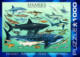 Animals of the Ocean Puzzle: Sharks: 1000 Pieces