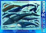 Animals of the Ocean Puzzle: Whales and Dolphins: 1000 Pieces