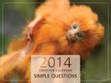 2014 Creation Calendar