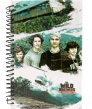 The Wild Brothers Journal
