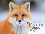 2017 Calendar: Created Kinds