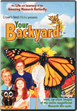 Your Backyard: Monarch Butterfly