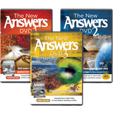 The New Answers DVDs 1–3 Bundle