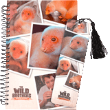 Newt the Pet Journal and Bookmark Set