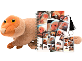 Newt the Pet Pack: Large Cuscus