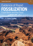 Evidence of Rapid Fossilization: Video download