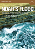 Noah's Flood: Video Download