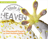 Made in Heaven eBook: eBook
