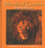 Marvels of Creation: Magnificent Mammals: eBook