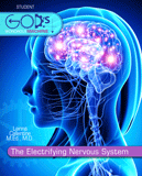 The Electrifying Nervous System: eBook