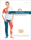 Introduction to Anatomy & Physiology: The Musculoskeletal System: eBook