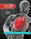 The Breathtaking Respiratory System: eBook
