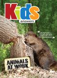 Kids Answers Mini-magazine - Vol. 10 No. 3: PDF