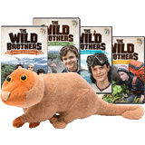 The Wild Brothers Adventures 1 - 4 + Newt