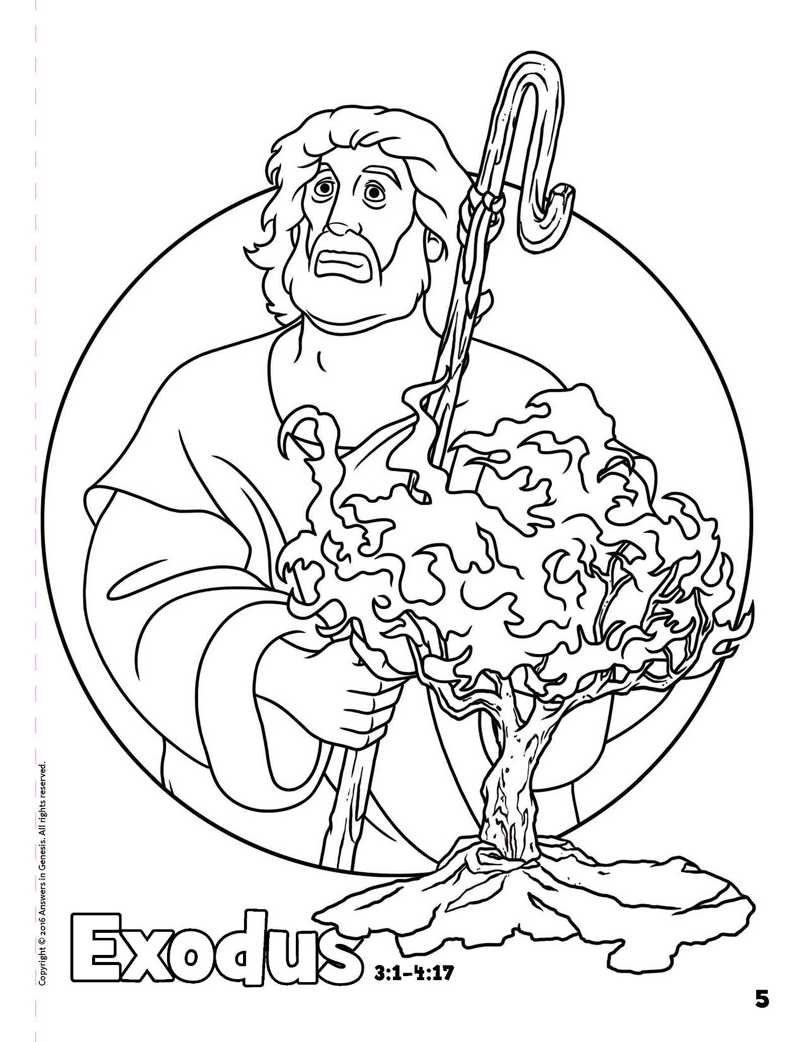 Books Of The Bible Coloring Book Answers In Genesis