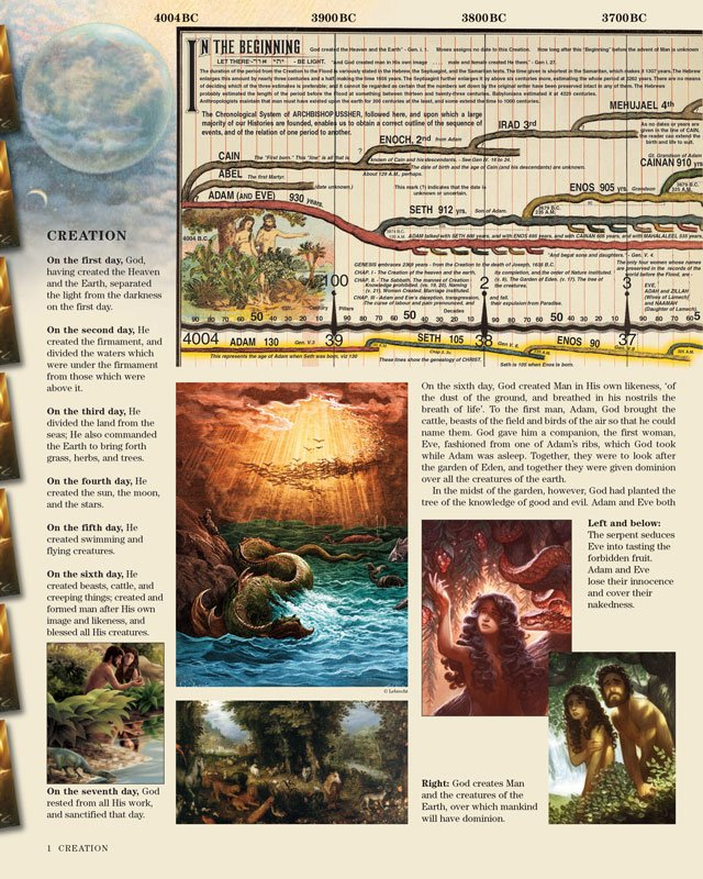 Timeline Sample Image